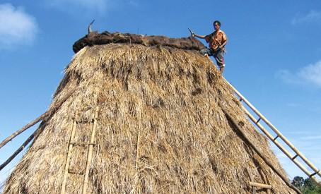 Uma lulik roof