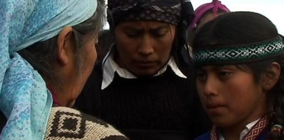 la nacion mapuche