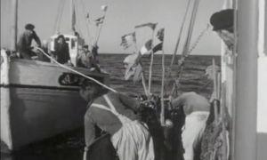 bout au vent -  Jean-Henri Marcel