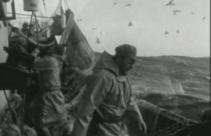 Prolétaires de la mer 2
